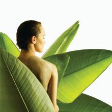 servicii-masaj-terapie-complementara-naturista1.png