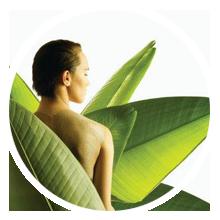 http://terapiipentrudurere.ro/wp-content/uploads/2013/09/servicii-masaj-terapie-complementara-naturista2.png
